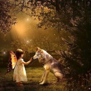 lobo y hadita